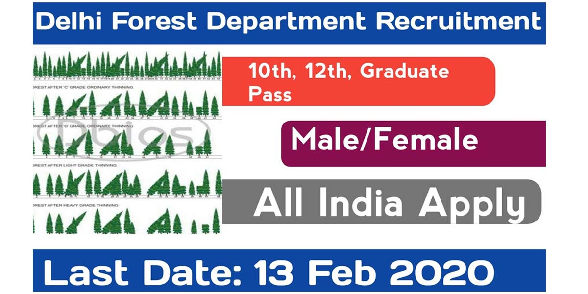 Delhi Forest Department Forest Guard Recruitment 2020